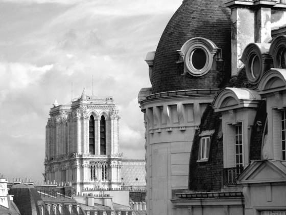 Left_bank_rooftops___notre_dame