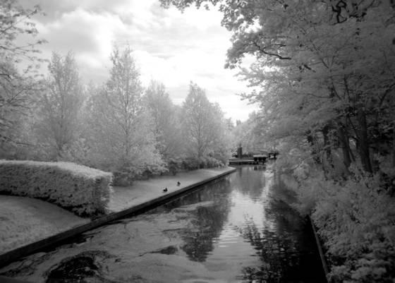 Kukenhof_gardens