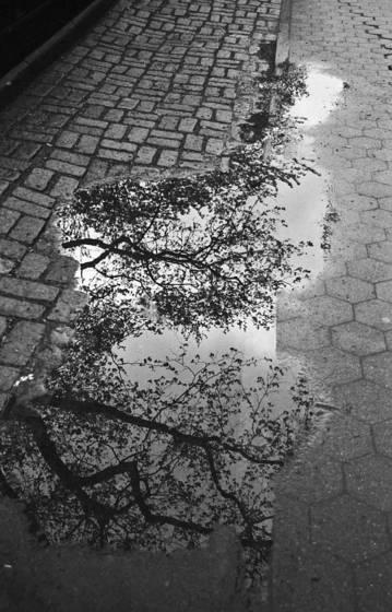 Sidewalk_no_3