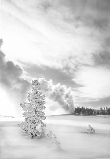 Old_faithful__yellowstone_national_park