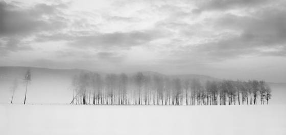 Winterlandscape