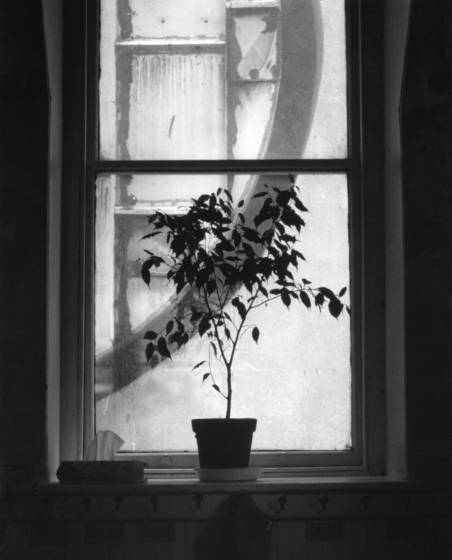 School_room_window