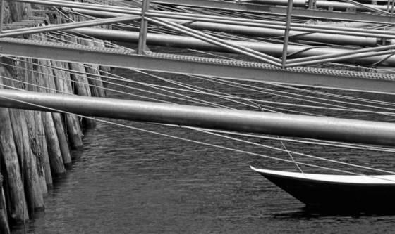 Harbor_lines_i
