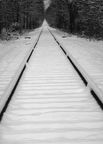 Tracks_in_the_snow