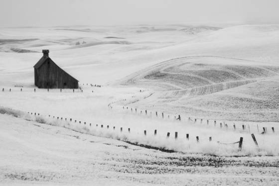 Palouse_barn