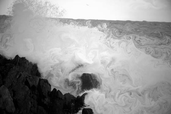 Surf__2