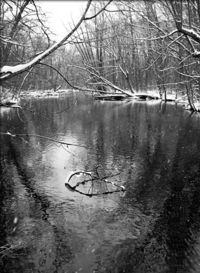 Snowy_river
