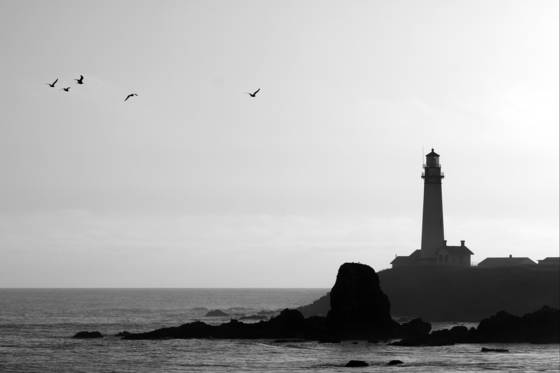 Pigeon_point_light_house