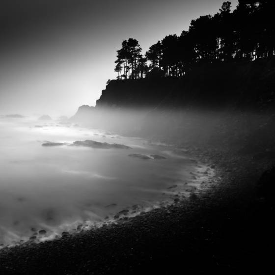 Foggy_cove