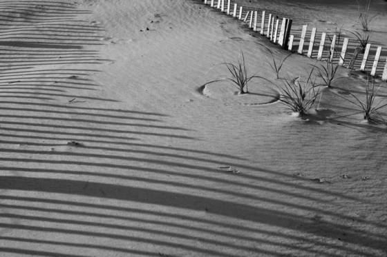 Sand_shapes