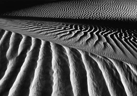 Dune__11