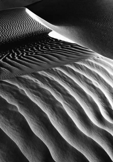 Dune__5