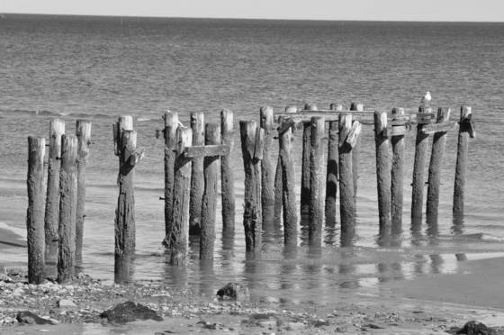Old_pier_3
