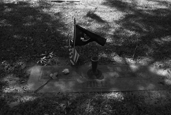 Grave with flags and rose