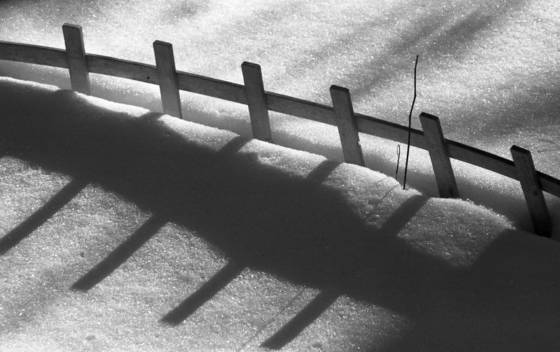 Snowy_fence