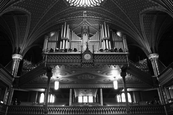 Organ_pipes