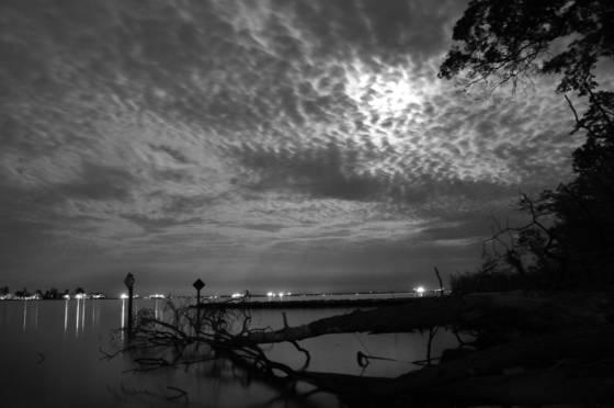 Moonlight_serenity_6