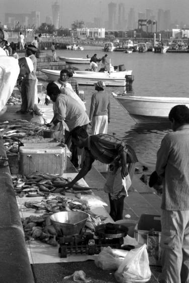 Fish_market_6