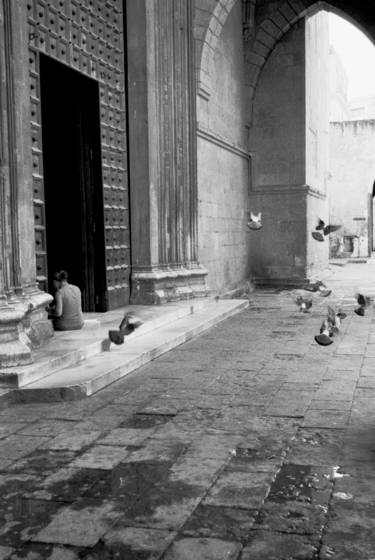 Church_pigeons