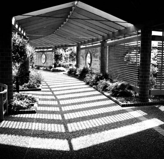 Spencer_garden_center_walk