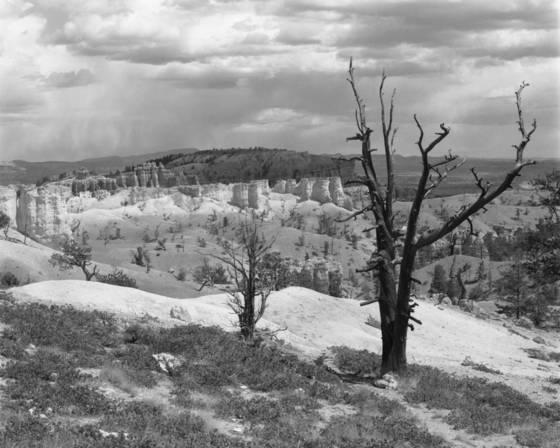 Bryce_canyon__2