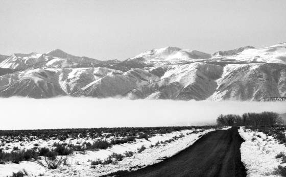 Sierra_mist