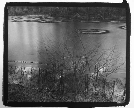 Fire_pond