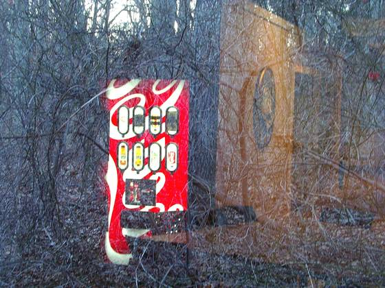 Coke in the woods  41
