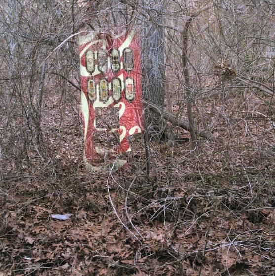 Coke_in_the_woods__44