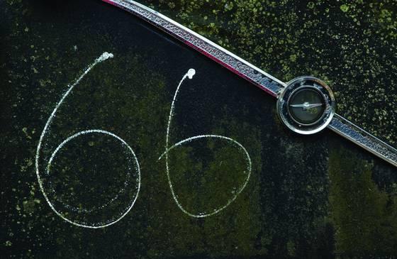 Number_66