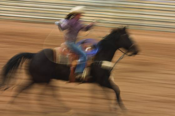 Rodeo_1