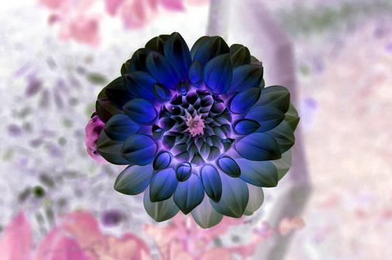 Garden_of_delight__3