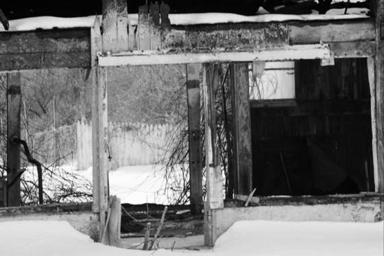 Wood_ruins