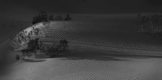 Untitled_4_-_sand_dunes