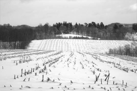 Galena_snow
