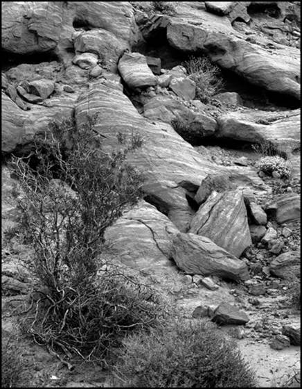 Valley_of_fire_rocks