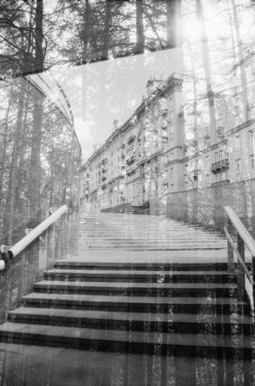 City-wood