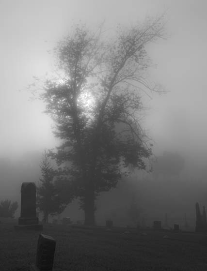 Mountain_view_cemetery__3