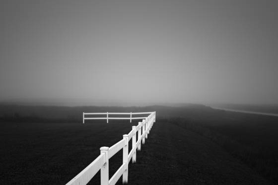 White_fence