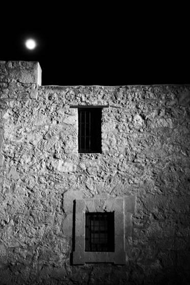 Alamo_nights