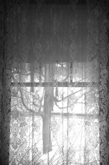 Lace_curtain