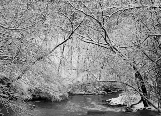 Doan_brook_beyond_the_falls