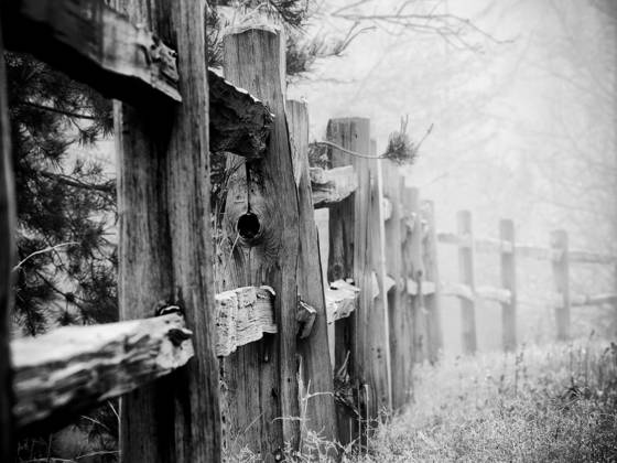 Fence_in_fog