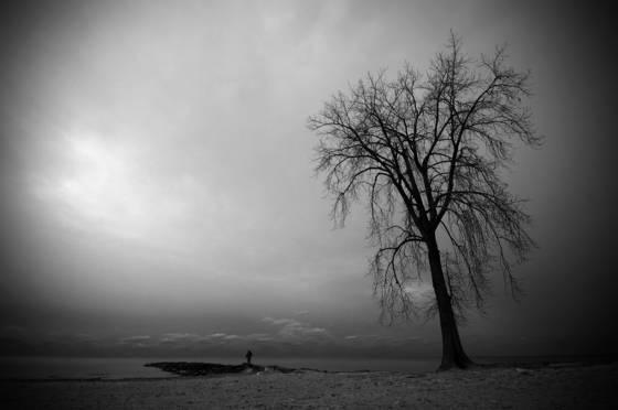 Sentinel_tree