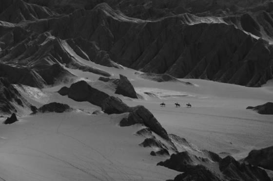 Desert_ride