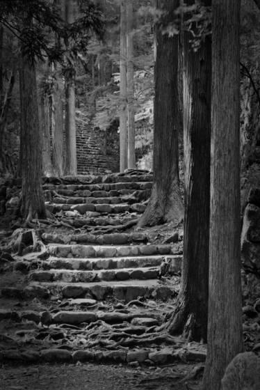 Temple_path