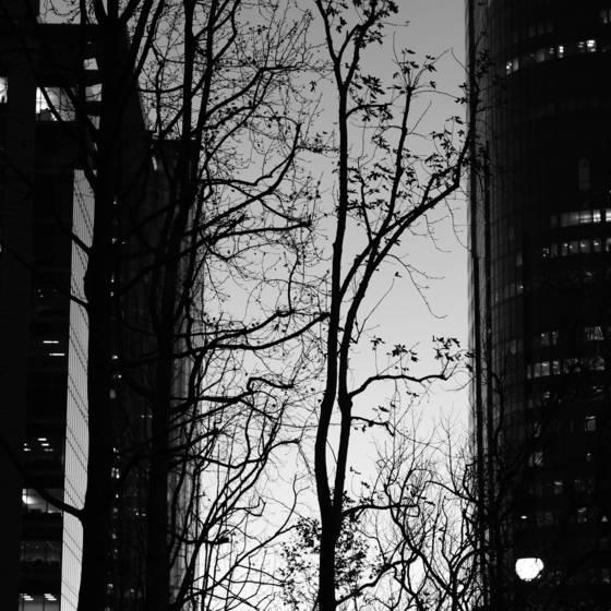 Urban_dusk