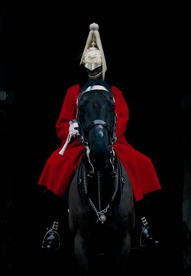 Horse_guard