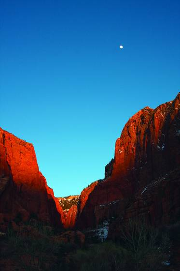 Zion_national_park