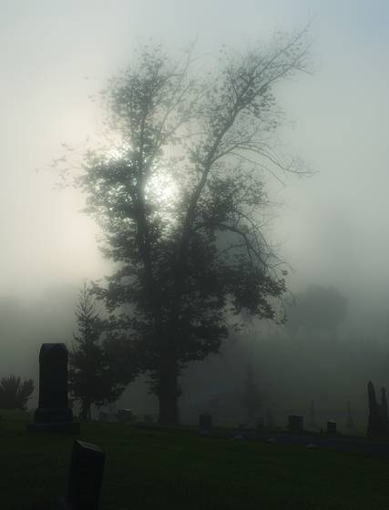 Mountain_view_cemetery